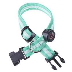 LED nylon collar