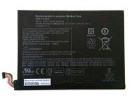 789609-001 Tablet accu's