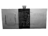 C12P1305 Tablet accu's