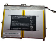 FG6Q batterij